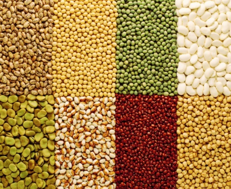 maharashtra-government-to-fix-mrp-for-pulses-niharonline